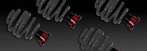 Gewindefedern Nissan GTR