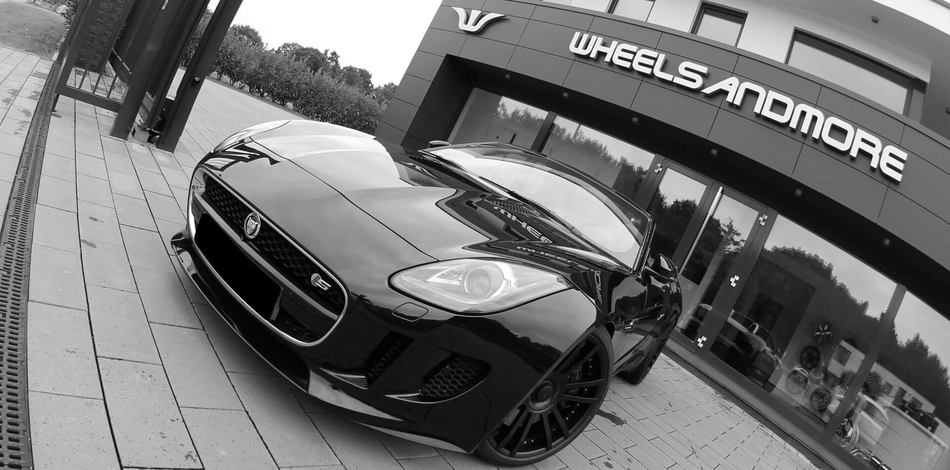 Jaguar Bildergalerie